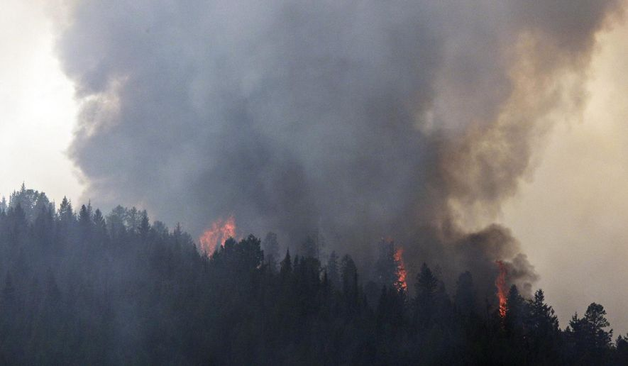 In this photo taken Thursday, Aug. 20, 2015, smoke and flames from the the Sheep Fire rise above the trees near Essex, Mont. Crews were working Thursday to prevent the wildfire from spreading to the small Montana community of Essex as authorities closed a major transportation corridor on Glacier National Park's southern boundary. (Greg Lindstrom/Flathead Beacon via AP) MANDATORY CREDIT