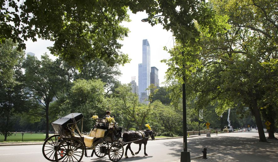 A horse-drawn carriage moves along the West Drive in New York's Central Park, Tuesday, Sept. 1, 2015. Pope Francis will take a spin through Central Park while visiting New York City this month. The city announced Tuesday that the pontiff will travel through part of the park Sept. 25 before celebrating Mass at Madison Square Garden. (AP Photo/Mark Lennihan)
