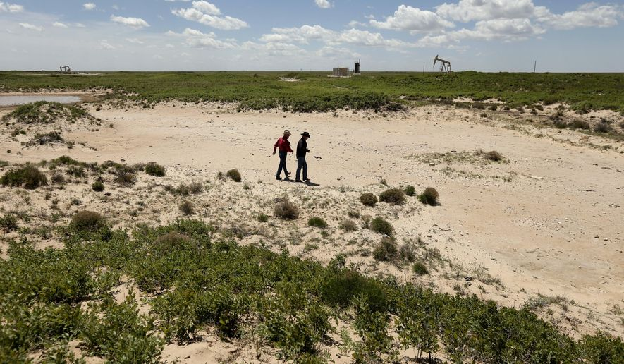 ADVANCE FOR USE TUESDAY, SEPT. 8, 2015 AND THEREAFTER - In this April 24, 2015 photo, Carl Johnson, left, and his son, Justin, walk across a stretch of pasture left barren after an oilfield wastewater spill on their ranch near Crossroads, N.M. The ranchers have been fighting oil companies for decades over spills of briny, polluted water. (AP Photo/Charlie Riedel)