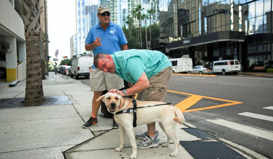 In this Aug. 18, 2015, photo provided by Southeastern Guide Dogs, Michael Jernigan strokes the head of his guide dog Treasure as he navigates the streets of Tampa, Fla., with Southeastern Guide Dogs training director Rick Holden. Jernigan lost his eyesight and part of his brain when a roadside bomb ripped into his Humvee in Iraq in 2004. He has undergone more than 30 surgeries. But he insists, thanks to a couple of dogs, he found more than he lost. (Esther McFarland/Southeastern Guide Dogs via AP)