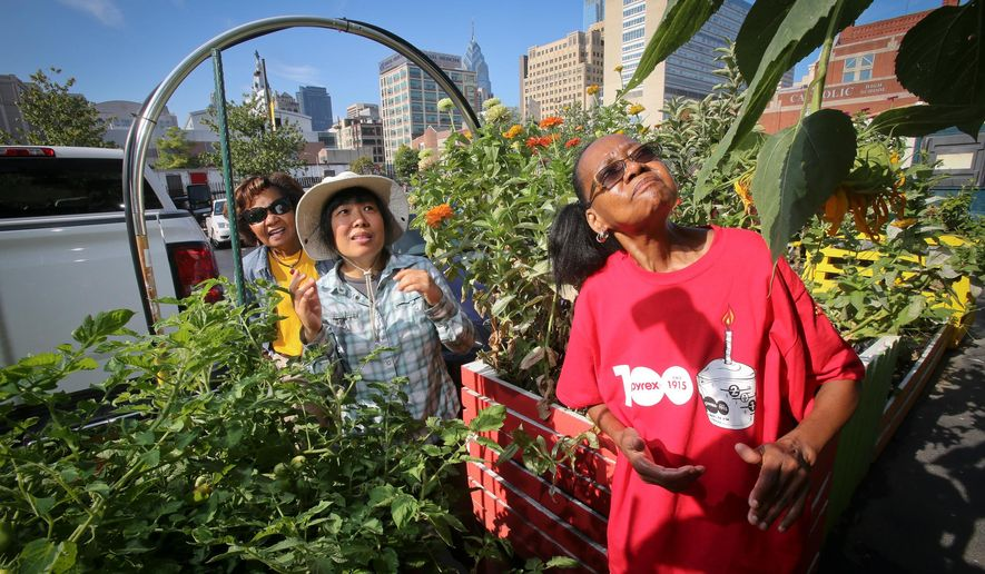 FOR RELEASE SATURDAY, SEPTEMBER 19, 2015, AT 3:01 A.M. EDT.- This photo taken Aug. 25, 2015, shows garden volunteer Joyce Randell, right,  artist Meei Ling, center, and urban garden designer and Valerie Marshall, left.  Asian Arts Initiative in connection with Sunday Breakfast Rescue Mission created an urban garden in Philadelphia. (Alejandro A. Alvarez/The Philadelphia Inquirer via AP)