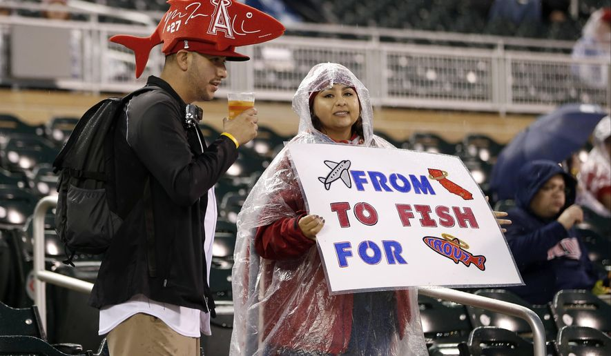 Fans of Los Angeles Angels' Mike Trout wait during a rain delay prior to a baseball game between the Angels and Minnesota Twins, Friday, Sept. 18, 2015, in Minneapolis. (AP Photo/Jim Mone)