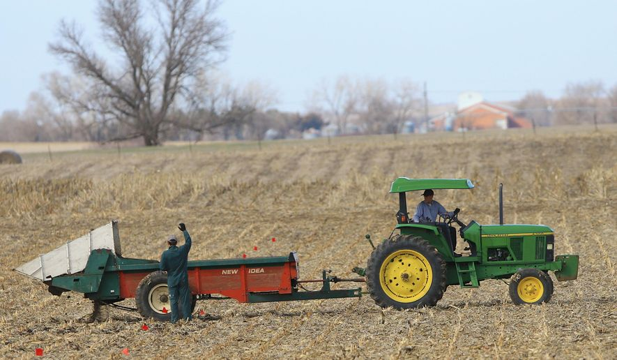 In this March 30, 2015 file photo, Richard Little, research technologist with the University of Nebraska-Lincoln, right, operates a spreader in a field near Mead, Neb. Farm management specialists say corn farmers in the Dakotas will likely face per-acre losses this season as high seed, land and fertilizer costs eat up any potential profits from low commodity prices. (AP File Photo/Nati Harnik)