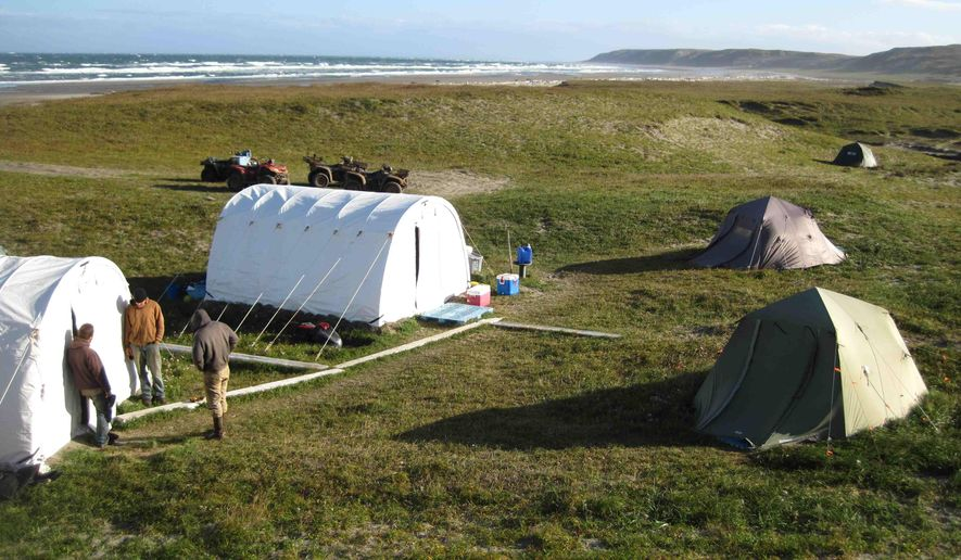 In this Sunday, Aug. 30, 2015, photo, people stand at a campsite involved in removing invasive arctic foxes on Chirikof Island, Alaska. A decades-old campaign to wipe dozens of Alaska islands clean of invasive arctic foxes is a step closer to wrapping up with an eradication effort this summer on a large, uninhabited island that's also home to hundreds of feral non-native cattle. (Steve Ebbert/Alaska Maritime National Wildlife Refuge via AP)