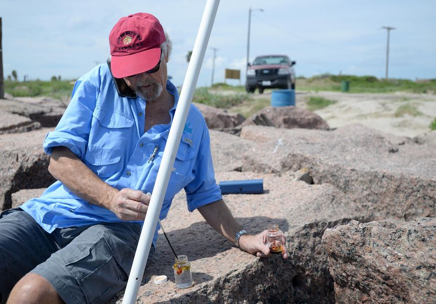 In this photo taken Thursday, Sept. 24, 2015, Tony Reisinger, a County Extension Agent with Cameron County and Texas A&M University, applies an iodine solution to a water sample taken moments earlier near the jetties of South Padre Island, Texas. The area has started to experience signs of red tide, an algae bloom that can cause fish kills, discolored beach waters, and also poses health risks to humans. The University of Texas-Rio Grande Valley Coastal Studies Lab is monitoring the deteriorating conditions and performing hand counts of algae cells from samples taken around the area's waters. (Jason Hoekema/Valley Morning Star via AP) MANDATORY CREDIT
