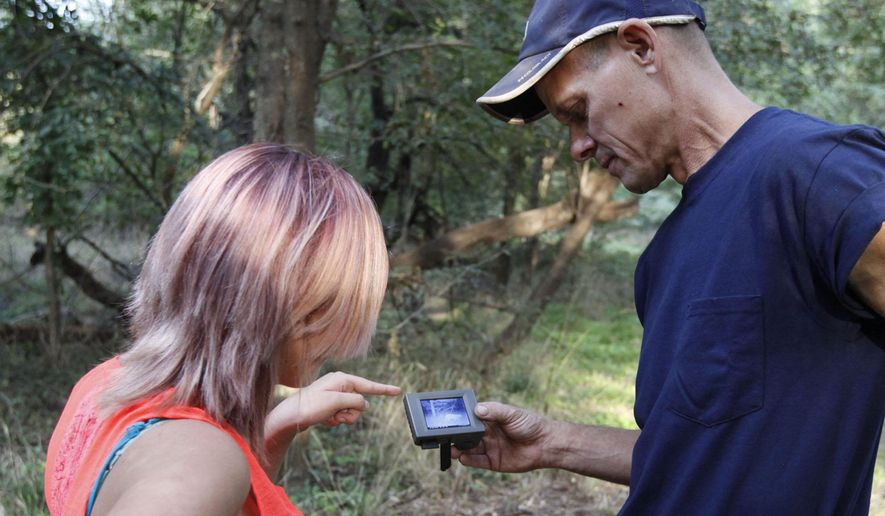 In this photo taken Thursday, Sept. 24, 2015, Danny Holden of Argonia, Kan., shows his daughter, Abbi, the image of a mountain lion near where the photo was taken with a trail camera on Sept. 20, 2015. If verified by biologists from the Kansas Department of Wildlife, Parks and Tourism, it would be the 13th verified mountain lion in Kansas since 2007. Before that, mountain lions had not been documented in the state for more than 100 years. (Michael Pearce/The Wichita Eagle via AP) LOCAL TELEVISION OUT; MAGS OUT; LOCAL RADIO OUT; LOCAL INTERNET OUT; MANDATORY CREDIT   MBO (REV-SHARE)