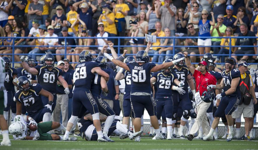 In this photo provided by Montana State University, Montana State players andthe  bench celebrate a fourth-down turnover by Cal Poly during an NCAA college football game, Saturday, Sept. 26, 2015, in Bozeman, Mont. (Kelly Gorham/Montana State University via AP)