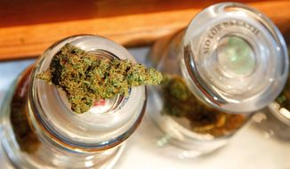 A cannabis bud rests on a container at Amazon Organics, a pot dispensary in Eugene, Ore., Monday, Sept. 28, 2015. Medical marijuana dispensaries in Oregon will be able to sell recreational marijuana starting Thursday. (AP Photo/Ryan Kang)