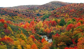 This undated image provided by the Asheville Convention & Visitors Bureau shows fall color along the Blue Ridge Parkway not far from Asheville, N.C., in an area called Graveyard Fields. Asheville offers an interesting mix of urban attractions including restaurants, the River Arts District and historic sites,  but its location also offers easy access to the great outdoors. (FallintheMountains.com/Asheville Convention & Visitors Bureau via AP)