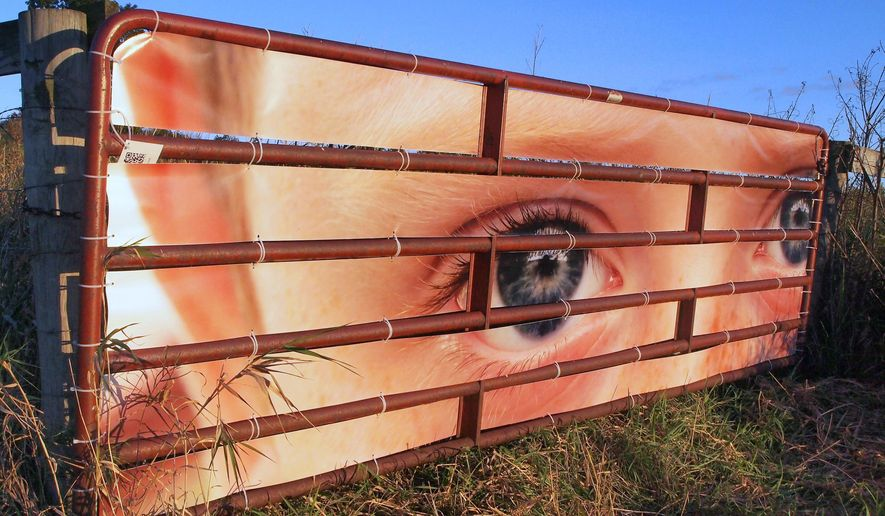 "ADVANCE FOR USE MONDAY, OCT. 12 - This recent photo shows part of a series of installations by Madison artist Thomas Ferrella called ""A Mutual Curiosity"", featuring photographs of the eyes of Sauk County, Wis., residents on gates and fences along the Farm/Art DTour route. (Peter Rebhahn/Baraboo News Republic via AP) MANDATORY CREDIT"