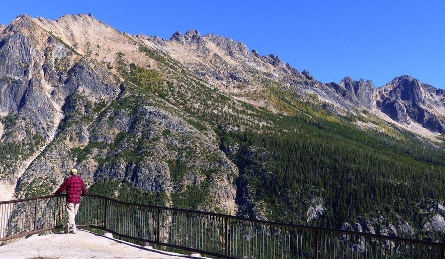 A visitor looks out at the North Cascades from the Washington Pass Overlook, among scenic areas untouched by summer wildfires along the North Cascades Highway (Highway 20). Larch trees on the hillsides should be at the peak of golden fall color in early October. Photo taken Sept. 2015. (Brian J. Cantwell/The Seattle Times via AP) OUTS: SEATTLE OUT, USA TODAY OUT, MAGAZINES OUT, TELEVISION OUT, SALES OUT. MANDATORY CREDIT TO:  BRIAN J. CANTWELL / THE SEATTLE TIMES.