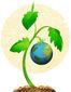 10132015_b4-harr-earth-tomat8201.jpg