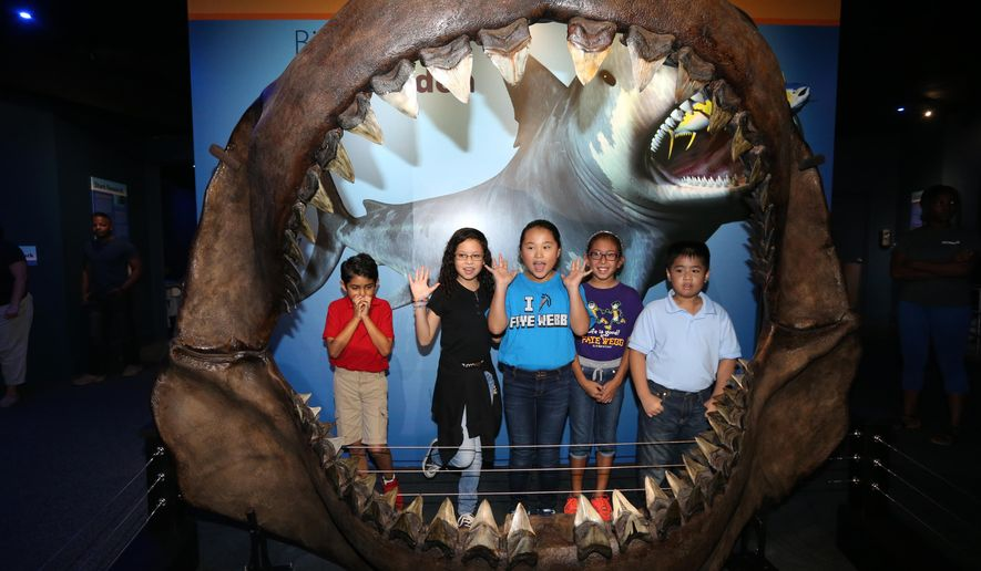 Webb Elementary School students, from left,  Elijah Escobar (from left), 9, Marissa Molina, 9, Hannah Quiroz, 9, Danielle Rodriguez, 10, and Johnny Nguyen, 9, take a photo in the new Saving Sharks exhibit at the Texas State Aquarium on Tuesday, Oct.13, 2015 in Corpus Christi, Texas.  The $325,000 exhibit allows visitors to track tagged sharks via computer. (Rachel Denny Clow/Corpus Christi Caller-Times via AP) MANDATORY CREDIT; MAGS OUT; TV OUT