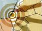 10192015_20120212opart-a8201.jpg