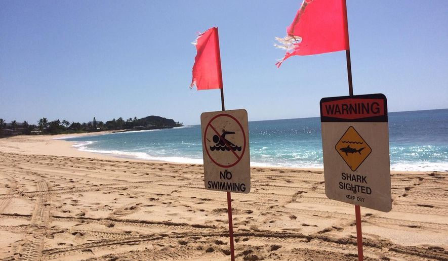 Signs warning of a shark sighting are posted at Makaha Beach Park in Waianae, Hawaii, Thursday, Oct. 29, 2015. A 10-year-old boy was bitten by a shark off at the Oahu beach on Wednesday. (AP Photo/Audrey McAvoy)
