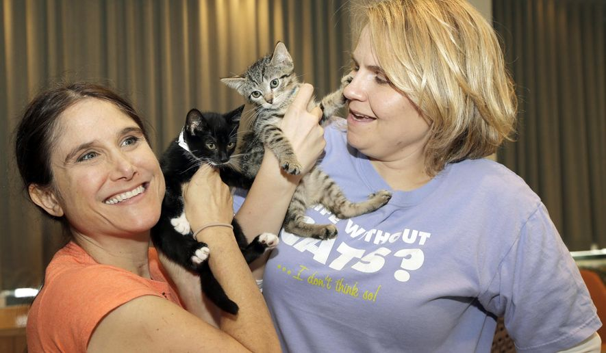 Shawn Simons, left, and Laura Moran play with Kittens that were delivered at Warner Bros. Studio by Uber in Burbank, Calif., Thursday, Oct. 29, 2015. The ride-hailing service promised kittens for what they called the best 15-minute snuggle available for $30. (AP Photo/Nick Ut)