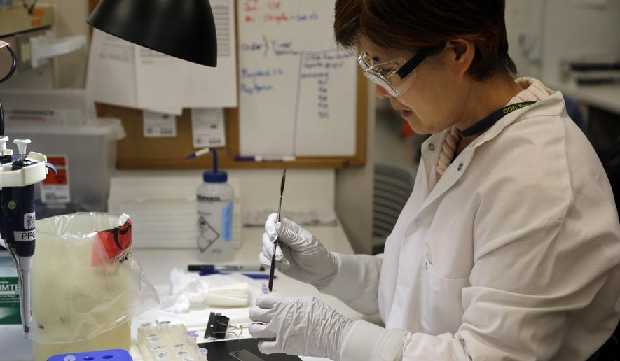 Microbiologist Mi Kang works to identify a strain of E. coli from a specimen in a lab at the Washington State Dept. of Health Tuesday, Nov. 3, 2015, in Shoreline, Wash. Chipotle's industry-leading commitment to tracking its ingredients from farm to table is being put to the test by an E. coli outbreak that has sickened at least 37 people as of Tuesday, nearly all of whom ate recently at one of the chain's restaurants in Washington state or Oregon. Scientists also said that they identified the specific microorganism responsible, which they believe was carried on fresh produce such as lettuce or tomatoes. (AP Photo/Elaine Thompson)