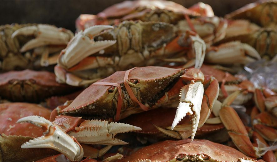 In this file photo, imported Dungeness crabs are displayed for sale at Fisherman's Wharf, Thursday, Nov. 5, 2015, in San Francisco. In June 2017 an oystering boat caught a few of the crabs, indigenous to the northern Pacific Ocean, off the coast of Connecticut, The Hour newspaper originally reported on June 27. While the species is invasive, there is little cause for alarm, marine biologists with Connecticut's Department of Energy and Environmental Protection said. (AP Photo/Eric Risberg) **FILE**