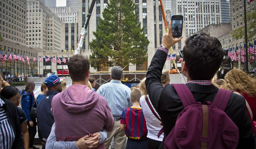 A Norway Spruce at least 75 feet high, from Gardiner, N.Y., draws attention after being placed in its new location as the 2015 Rockefeller Center Christmas tree, Friday, Nov. 6, 2015, in New York. (AP Photo/Bebeto Matthews)