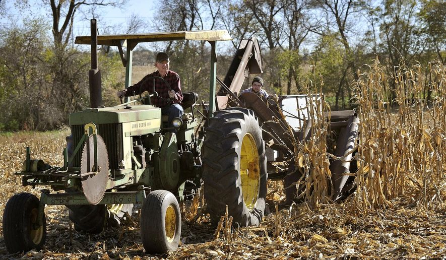 ADVANCE FOR SATURDAY, NOV. 7, 2015 - In this photo taken on Monday, Nov. 2, 2015, Don Magee, with his grandson Jacob Larsen in tow, uses his 1957 John Deere tractor and 1930's vintage Dearborn Woods Brothers one-row corn picker to harvest a row of corn east of Lincoln, Neb. (Eric Gregory /The Journal-Star via AP) LOCAL TELEVISION OUT; KOLN-TV OUT; KGIN-TV OUT; KLKN-TV OUT; MANDATORY CREDIT