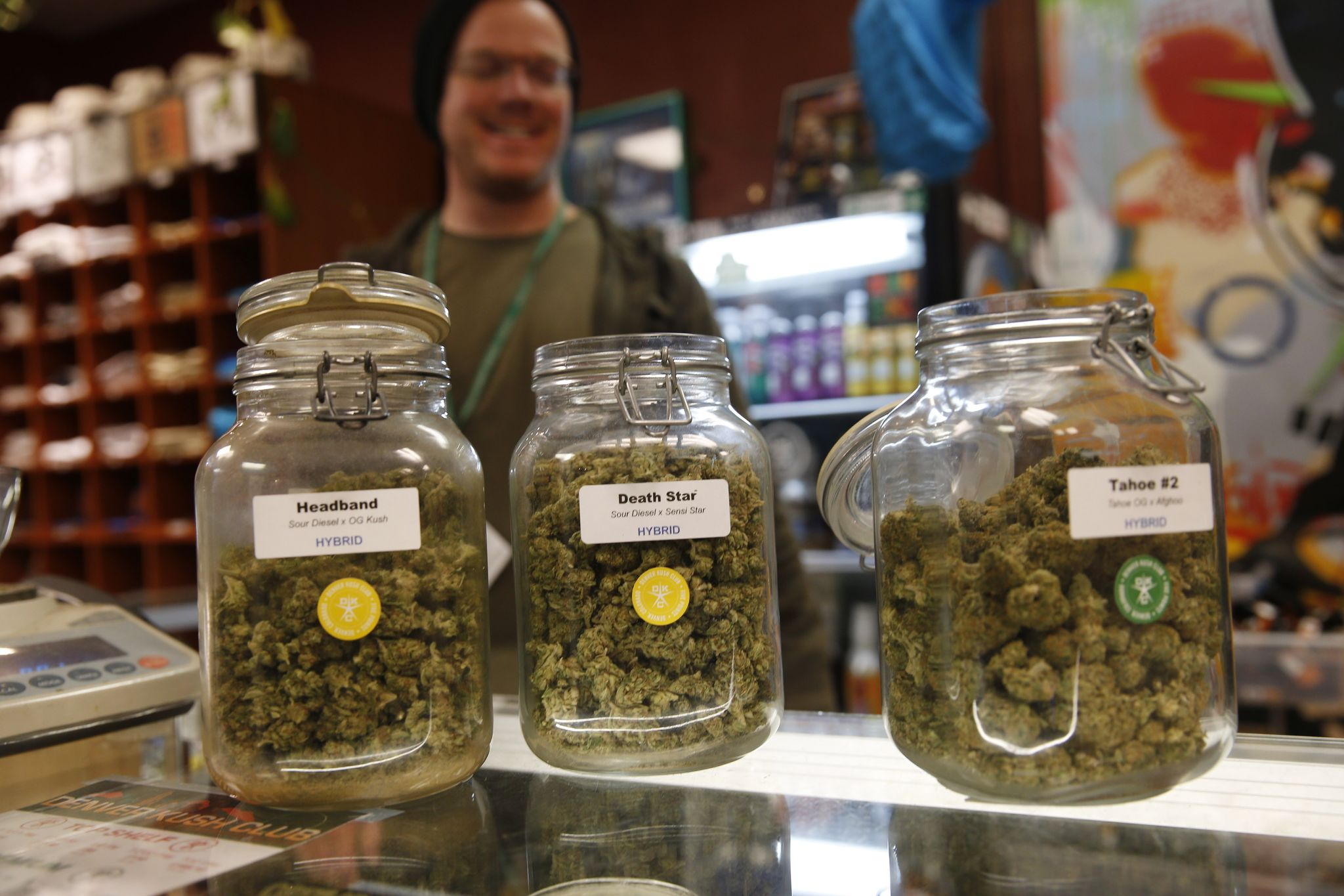 Colorado marijuana shops shattered record, sold $7.3M worth of pot on 4/20: report