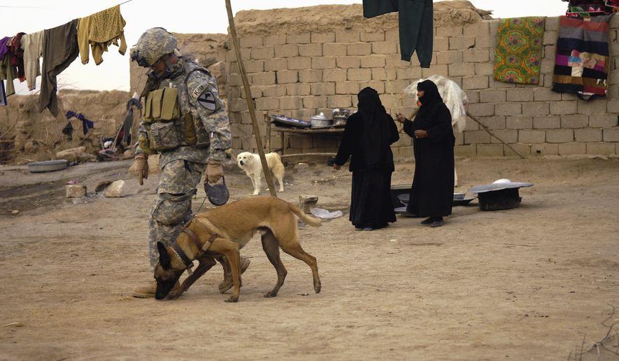 American Dog Association Service Dog