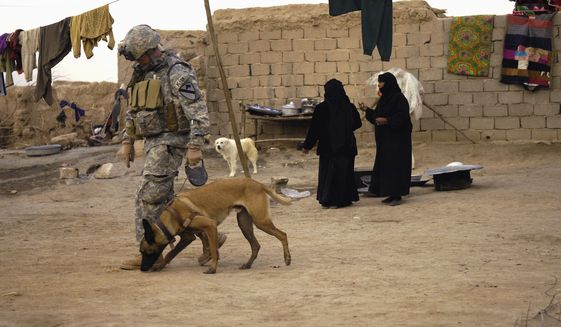 The U.S. military is trying harder to reunite soldiers with their four-legged battlefield companions, both as a way to readjust service personnel to home life and to get the dogs out of harm's way. (Associated Press)