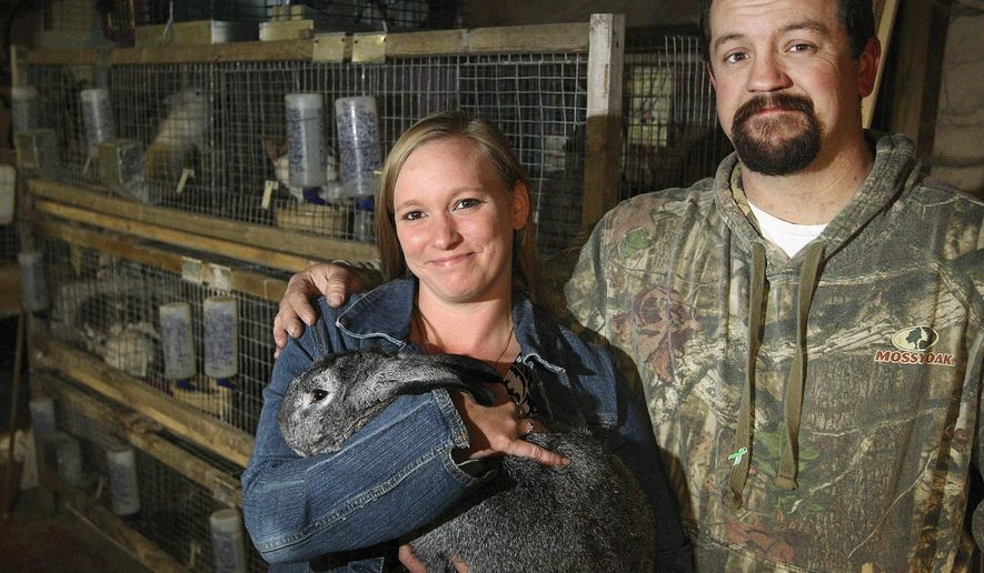 In this Nov. 9, 2015 photo, Chelsea and Scott Cuttill pose for a photo inside Thumping Trails Rabbitry, the rabbit breeding business they started two years ago in Boody, Ill. (Jim Bowling/Herald & Review via AP)