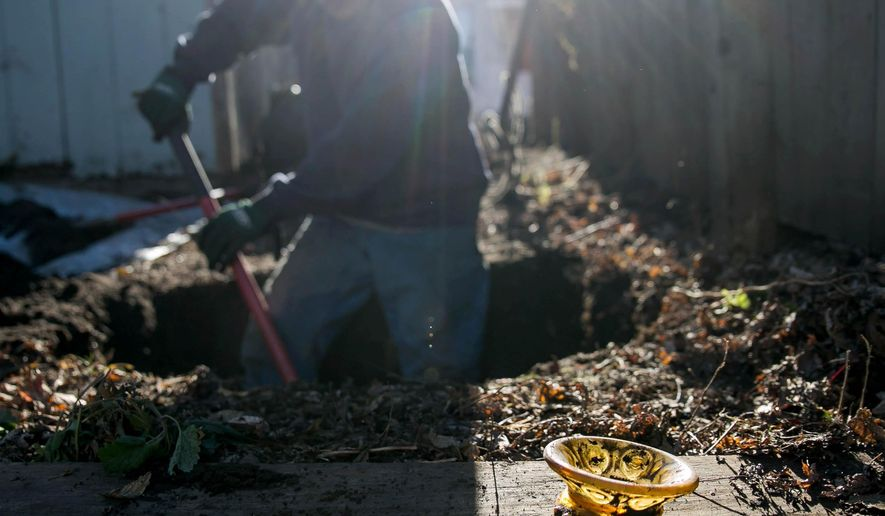 ADVANCE FOR RELEASE MONDAY, DECEMBER 7, 2015 A vintage berry bowl unearthed by Dave Vollmar, an urban archaeologist who digs for items southern Minnesotans discarded in their backyards decades ago, sits next to a hole as he continues to search during a dig, Saturday, Nov. 12, 2015 in St. Peter, Minn. (Trevor Cokley/Mankato Free Press via AP)