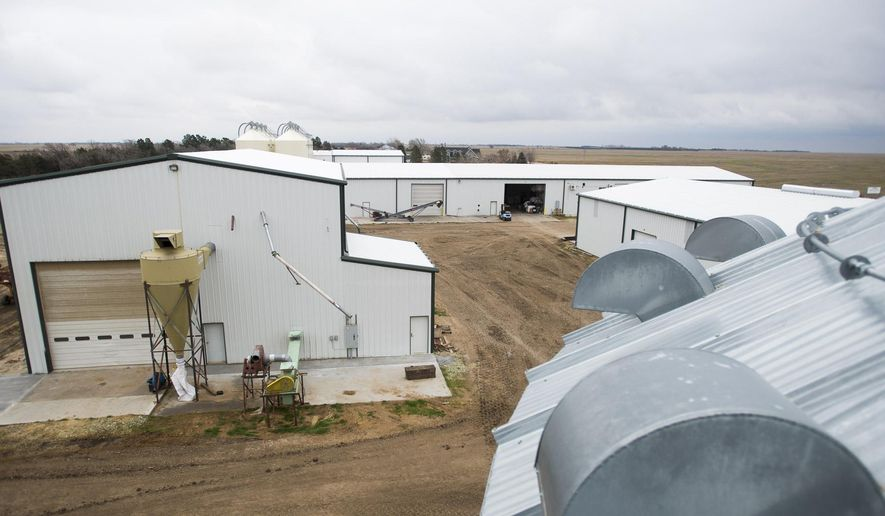 ADVANCED FOR RELEASE SUNDAY, DECEMBER 6, 2015 Keith Berns said that a little over five years ago their sprawling operation was just farmland. Pictured on Wednesday, Nov. 25, 2015, at Green Cover Seeds south of Bladen, Neb. (Matt Ryerson/The Lincoln Journal Star  via AP)