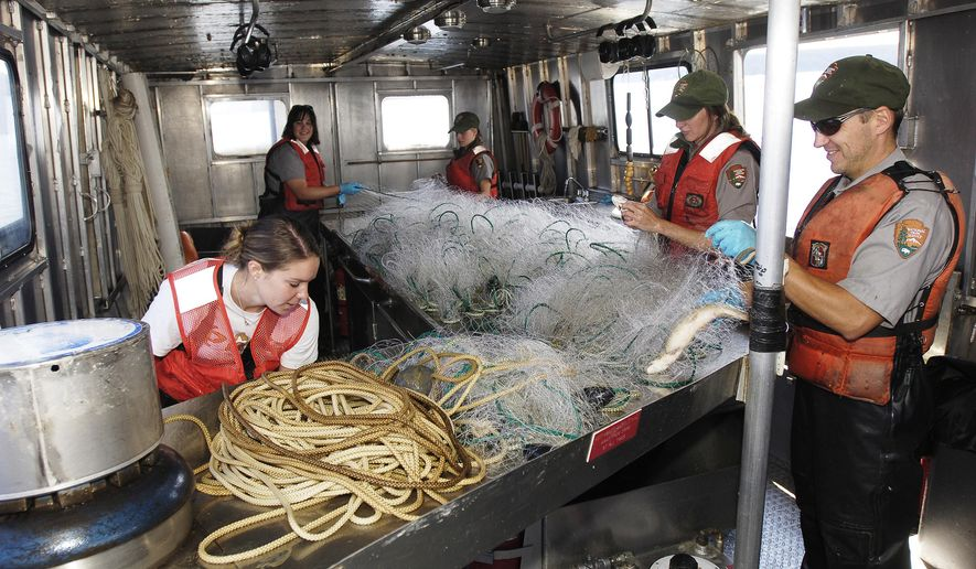 FILE - In this Aug. 18, 2006, file photo, the crew of the Freedom pull fish from nets and restocks nets while fishing for lake trout on Yellowstone Lake in Yellowstone National Park, Wyo. In 2015, crews recorded their biggest catch yet in a long-running effort to reduce the number of non-native lake trout from Yellowstone Lake. The National Park Service reports some 315,000 lake trout were captured and killed in 2015. (David Grubbs/Billings Gazette via AP, File)