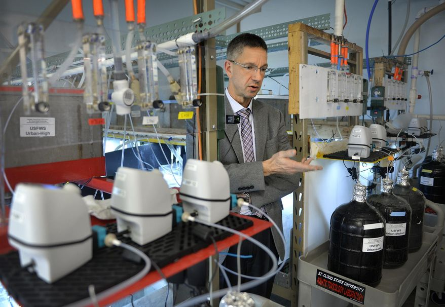 ADVANCE FOR USE MONDAY, DEC. 14 - In this photo taken Nov. 23, 2015,, St. Cloud State University professor Heiko Schoenfuss talks in the school's aquatic toxicology lab in St. Cloud, Minn., about the ongoing study that observes the effects of common pharmaceuticals and chemicals in water on fathead minnows. (Kimm Anderson/St. Cloud Times via AP)  NO SALES; MANDATORY CREDIT