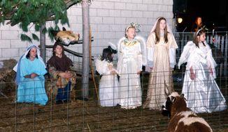 A goat watches a Live Nativity at Regal Vineyard in Geneva Township, Ohio, on Saturday Dec. 12, 2015. (Warren Dillaway /The Star-Beacon via AP) MANDATORY CREDIT