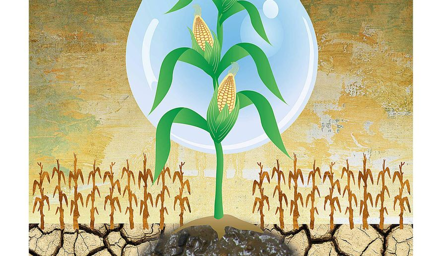 Mismanagement Deepens Drought Damage Illustration by Greg Groesch/The Washington Times