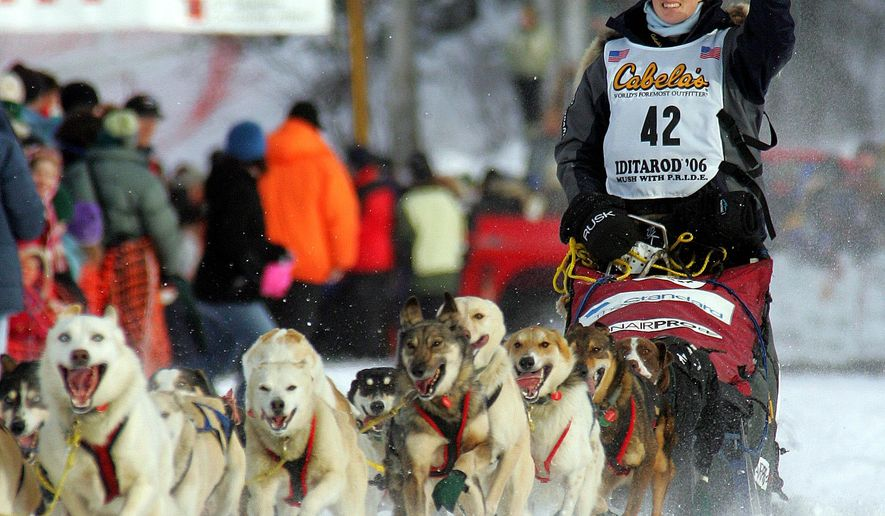 FILE - In this Sunday, March 5, 2006, file photo, musher Rachael Scdoris, of Bend, Ore., waves to the crowd as she drives her dog team down the starting chute of the Iditarod Trail Sled Dog Race in Willow, Alaska. Scdoris completed the race, placing 57th among 72 finishing teams, and the 10-year anniversary of her becoming the first legally blind musher to finish the Iditarod is just three months away. (AP Photo/Al Grillo, File)