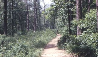 A wooded area in Rock Creek Park (Image from National Park Service)
