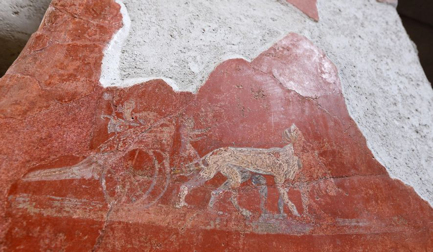 A detail of a graffiti inside the Fullonica di Stephan's, one of the six domus reopened to the public in the archeological venue of the ancient Roman town of Pompeii, near Naples, Italy, Thursday, Dec. 24, 2015. Pompeii, destroyed in 79 by a volcanic eruption, in the last years has been plagued by labor disputes locking out tourists and collapses of some stretches of ruins, with funding chronically short for maintenance. (AP Photo/Riccardo De Luca)