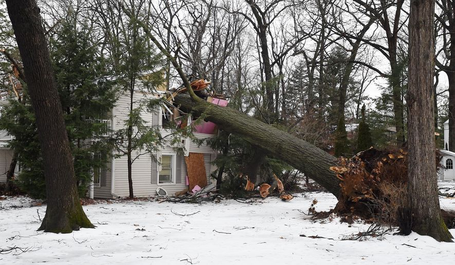 A fallen tree did significant damage to a home at 910 Oak Grove near Foote Manor in Summit Township, Mich., seen on Tuesday, Dec. 29, 2015.  The tree hit the home during an ice storm on Monday evening. (J. Scott Park/Jackson Citizen Patriot via AP))
