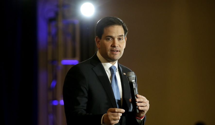 Republican presidential candidate Sen. Marco Rubio, R-Fla., speaks during a rally in Dallas, Wednesday, Jan. 6, 2016. (AP Photo/LM Otero)