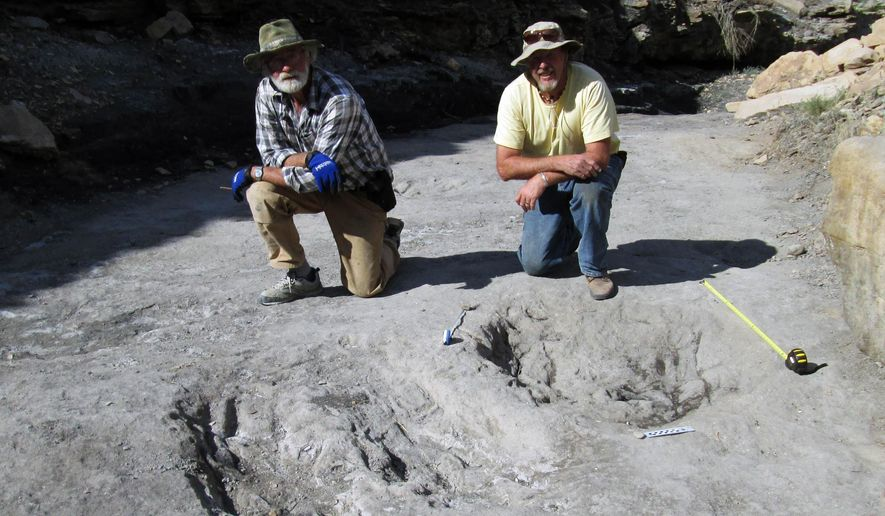 This undated photo provided in January 2016 by Dr. Martin Lockley shows him, right, and co-author Ken Cart beside two large Cretaceous-age scrapes from western Colorado that are the first physical-reported evidence that large theropod dinosaurs engaged in courtship behavior. The scientists who discovered the long grooves say they were dug by the feet of dinosaurs during a frenzied ritual to attract mates. Such behavior is seen nowadays in some birds, and the discovery suggests that two-legged, meat-eating dinosaurs called theropods did it about 100 million years ago, the researchers said in a report released Thursday, Jan. 7, 2016. (Courtesy of Martin Lockley via AP)
