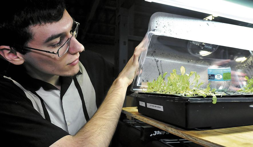 ADVANCE FOR WEEKEND EDITIONS JAN. 9-10 - In this Dec. 17, 2015 photo, Robert Stiver, Purdue Polytechnic sophomore, checks on the lettuce that students are growing in their hydroponic project they hope will help supply Second Harvest Food Bank with a constant supply of fresh produce in Anderson, Ind. (John P. Cleary/The Herald-Bulletin via AP) MANDATORY CREDIT