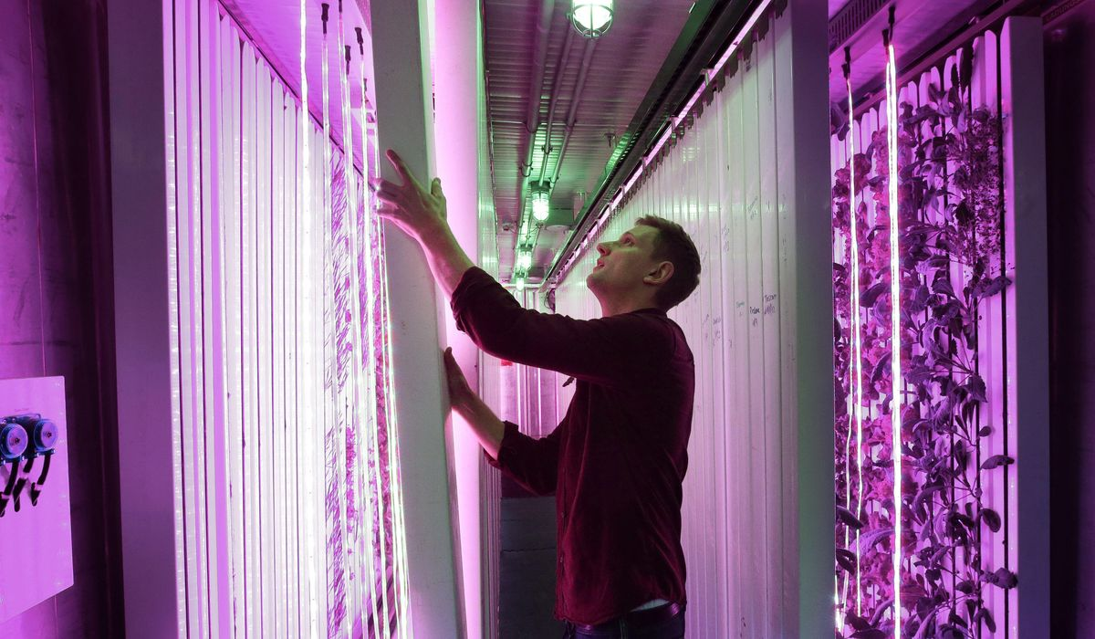 Farm In A Box Shipping Containers Reused For Fresh Produce Washington Times