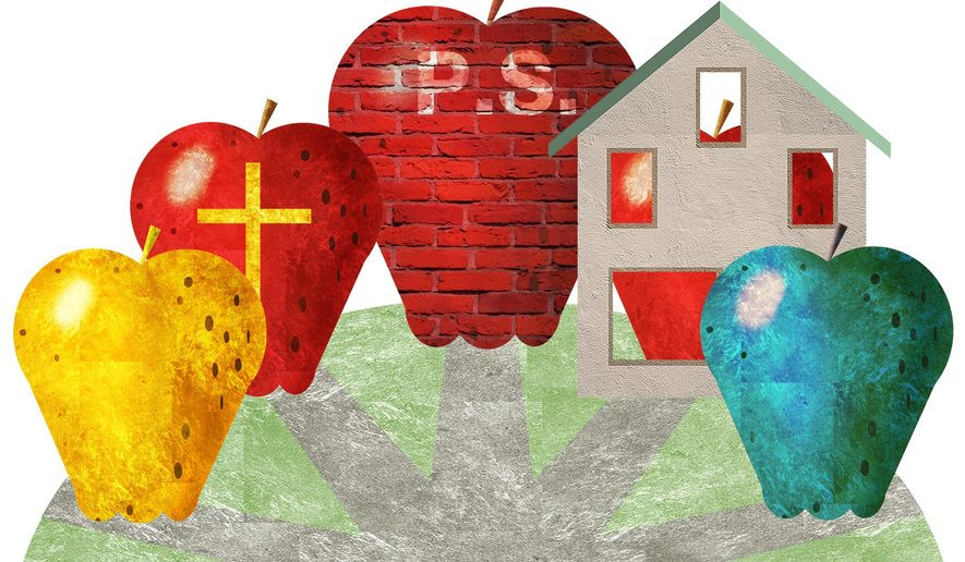 Illustration on school options for families by Alexander Hunter/The Washington Times