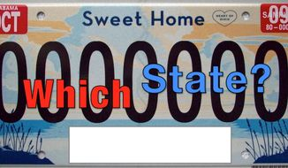A staple of any good road trip, see how many license plates you can identify: