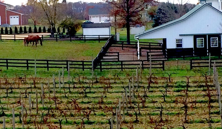 Views of Virginia horse country surround the vineyards at Sunset Hills winery.