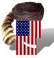 1_252016_b1-flag-usa8201.jpg