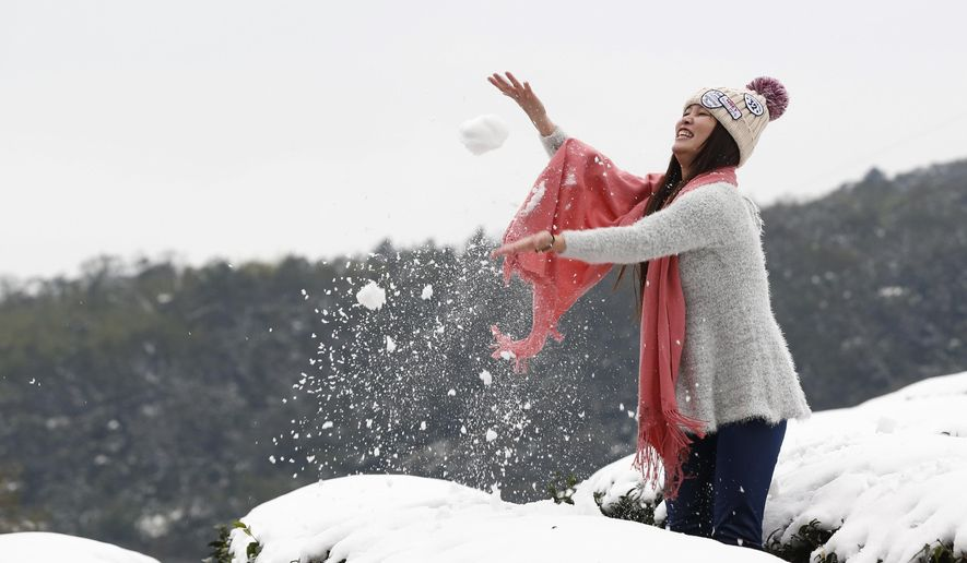 A woman plays in the light snowfall on a tea plantation in the Pinglin mountain area of  New Taipei City, Taiwan, Monday, Jan. 25, 2016. An unusually cold weather front that caused sudden drops in temperatures has been blamed for killing as many as 57 people in Taiwan's greater Taipei area. (AP Photo/Wally Santana)