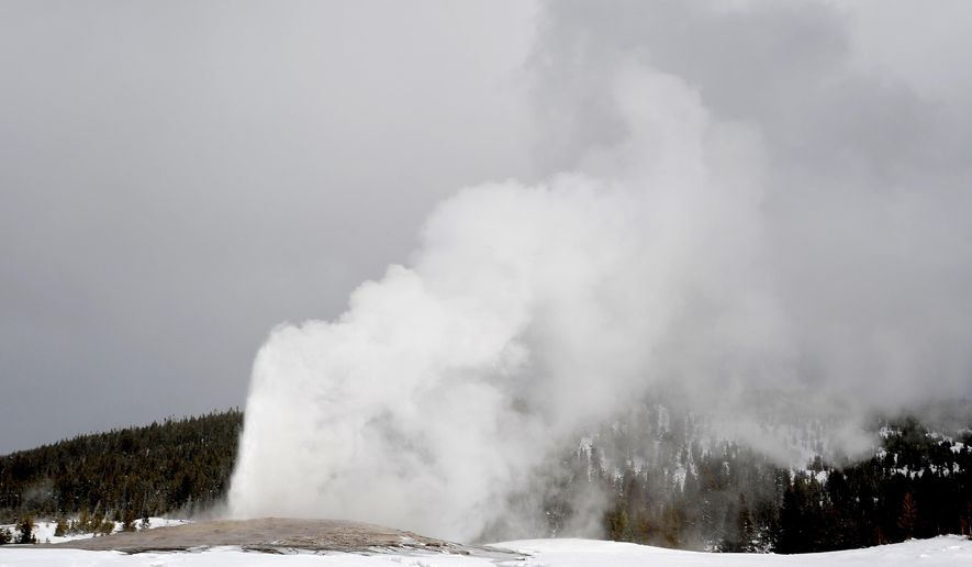 ADVANCE FOR USE SATURDAY, JAN 30 - In this photo taken Jan. 15, 2016, Old Faithful erupts at Yellowstone National Park in Montana. This winter is the second season under Yellowstone National Park's new plan that has limited snowcoach and snowmobile traffic, although the changes were phased in over several years. The results are noticeable to many. (Hannah Potes/The Billings Gazette via AP) MANDATORY CREDIT