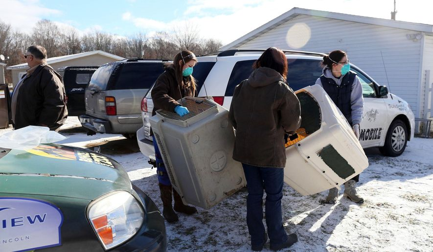 St. Joseph County Sheriff's Department and Animal Control officers work with specialist from Binder Park Zoo to remove exotic animals from a residence on Barker Road in Mottville Township, Mich., Friday, Jan. 29, 2016. (Mark Bugnaski/Kalamazoo Gazette-MLive Media Group via AP)
