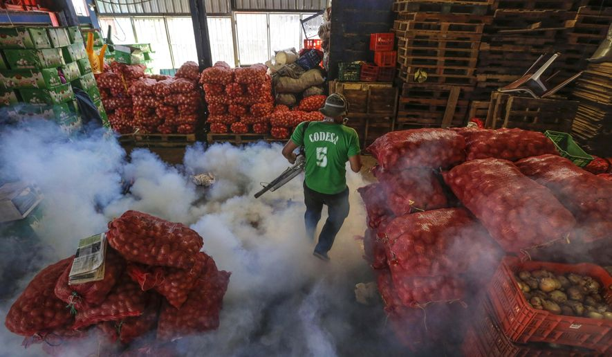 FILE - In this Jan. 28, 2016 file photo, a Health Ministry worker fumigates for the Aedes aegypti mosquitoes that transmits the Zika virus at the Oriental Market in Managua, Nicaragua. On Tuesday, Feb. 2, 2016, Nicaragua's government reported 15 people have become infected with the Zika virus, including the first two pregnant women. (AP Photo/Inti Ocon, File)